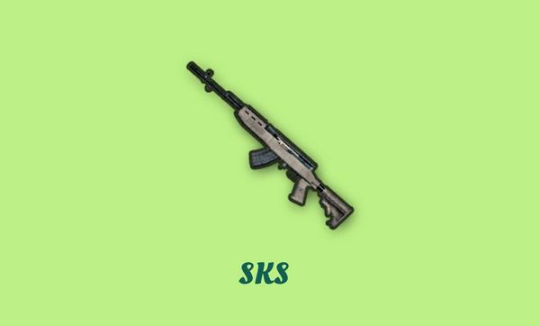 SKSの画像
