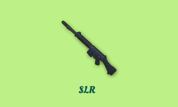 SLRの画像