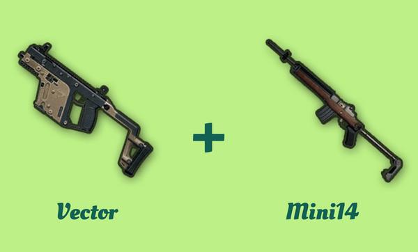 Vector と Mini14 の組み合わせ