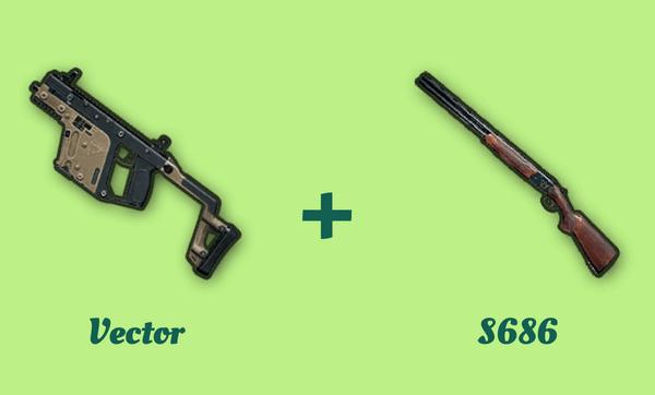 Vector と S686 の組み合わせ
