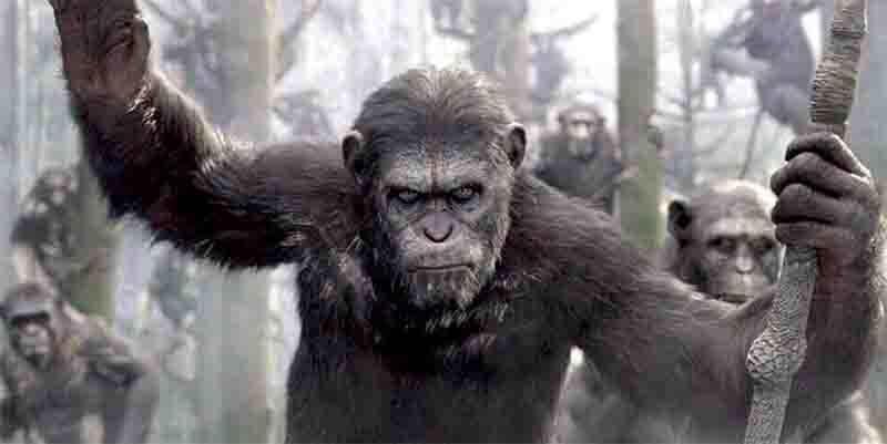 猿の惑星シリーズの画像
